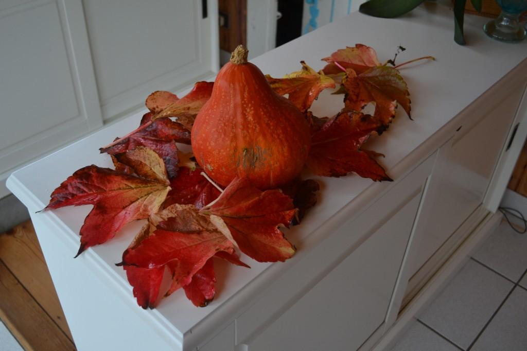 bon hallowenn fête des citrouilles  dsc_00111